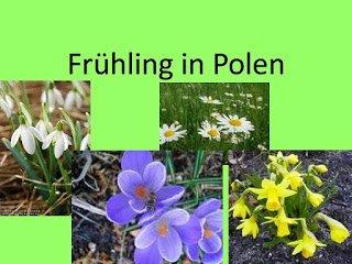 Frühling in Polen